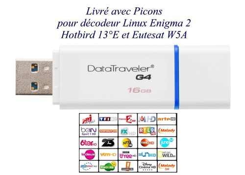 Clé USB Kingston 16 Go DataTraveler USB 3.0 avec picon E2